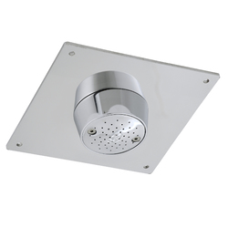 Safe-Cell Chrome Plated Brass Prison Vandal Resistant Ceiling Mtd Shower Rose with Stainless Steel Plate [MTO]